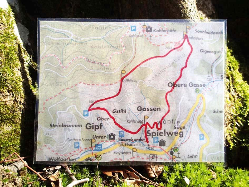 Wildkraeuter-erleben-Route-Obermuenstertal